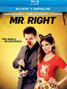 Bay Doğru – Mr Right 2015 tek part film izle