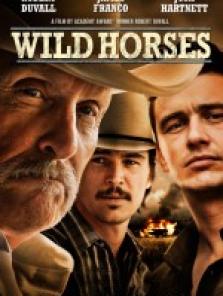 Vahşi Atlar – Wild Horses 2015 tek part izle